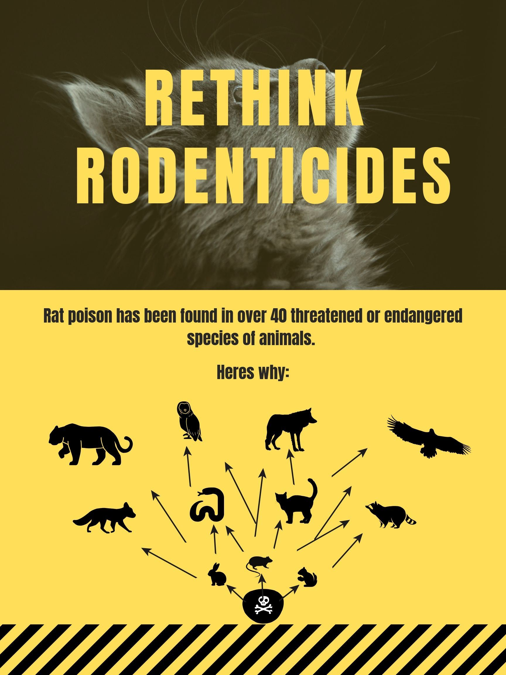 Rodenticide Image
